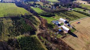 3G's Tree Farm Dover PA