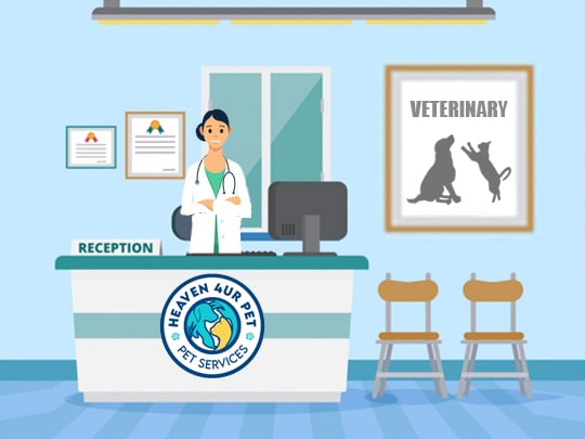 Our animal care center offers emergency veterinary services specifically dog care center